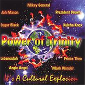 Power Of Trinity by Various Artists