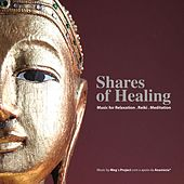 Shares of Healing by Meg's Project