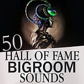 50 Hall of Fame Bigroom Sounds by Various Artists