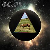 Dark Side Of The Mule di Gov't Mule