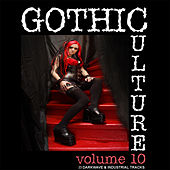 Gothic Culture Vol. 10 - 23 Darkwave & Industrial Tracks by Various Artists