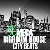 50 Mega Bigroom House City Beats by Various Artists