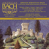 J.S. Bach - Cantatas Volume V by American Bach Soloists