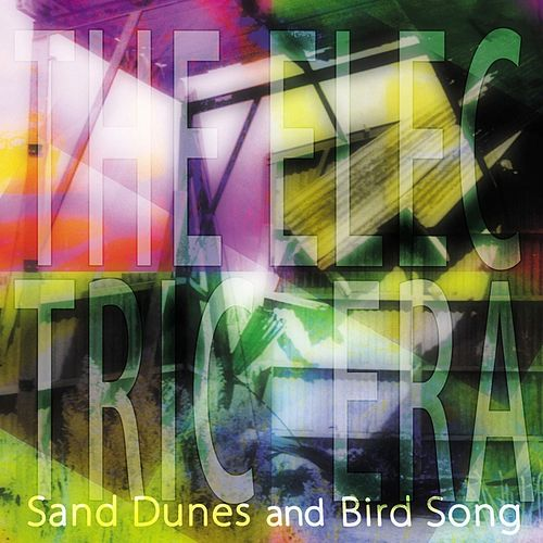 Sand Dunes and Bird Song by The Electric Era