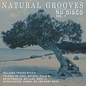 Natural Grooves - The Finest Selection of Nu Disco, Vol. 1 von Various Artists