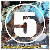 5 Years Of Whartone Records - EP de Various Artists