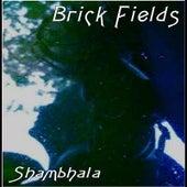 Shambhala by Brick Fields