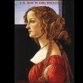 Vivaldi: The Four Seasons & Cello Concerto - Bach: Violin Concerto in A Minor, Air On the G String & Toccata and Fugue - Pachelbel: Canon in D Major - Walter Rinaldi: Orchestral Works - Albinoni Adagio in G Minor by Various Artists