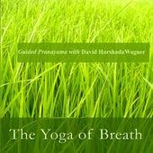 The Yoga of Breath: Guided Pranayama With David Harshada Wagner von Music For Meditation
