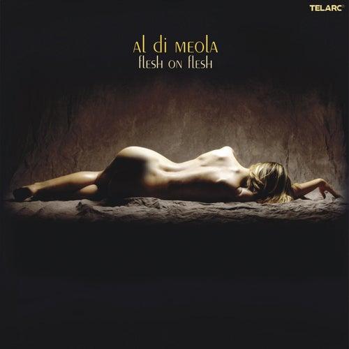 Flesh on Flesh by Al DiMeola