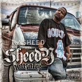Sheedy Gonzalez by Rasheed