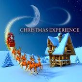 Christmas Experience (A Timeless Christmas Songs) von The Mormon Tabernacle Choir