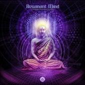 Resonant Mind de Various Artists