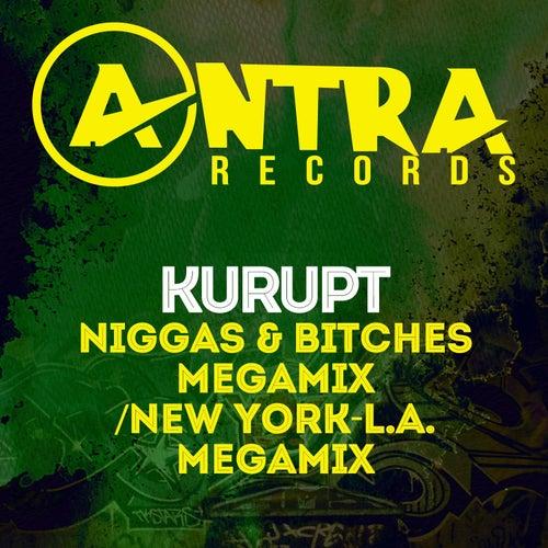 Niggas & Bitches Megamix / New York-L.A. Megamix by Kurupt