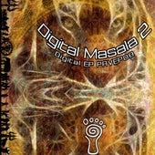 Parvati Records Digital Masala, Vol. 2 by Various Artists