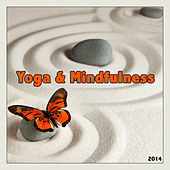 Yoga & Mindfulness Music by Various Artists