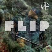 Dreaming (feat. A.G.) de Lil' Flip