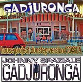 House Project Dunstep Version Costa (feat. Gadjuronga) di Johnny Spaziale