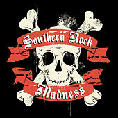 Southern Rock Madness de Various Artists