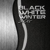 Black White Winter 2015 de Various Artists
