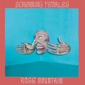 Ripe - Single by Screaming Females