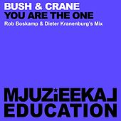 You Are The One (Rob Boskamp & Dieter Kranenburgs Mix) by Bush