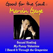 Good for the Soul: Marvin Gaye by Marvin Gaye