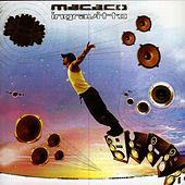 Ingravitto by Macaco