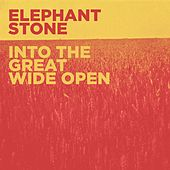 Into the Great Wide Open by Elephant Stone