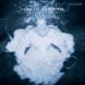 Liquid Mind VII: Reflection by Liquid Mind