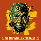 In My Brain (Remixes) (feat. Maxi Jazz) by The Hempolics