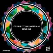 Sunshine (feat. Tom Zanetti & JW) by Kokane