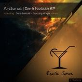 Dark Nebula - Single by Arcturus