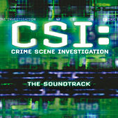 CSI: Crime Scene Investigation The Soundtrack by Various Artists