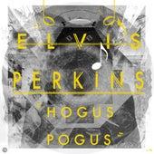 Hogus Pogus by Elvis Perkins