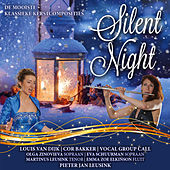 Silent Night (De Mooiste Klassieke Kerstcomposities) de Various Artists