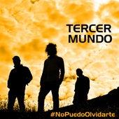 No Puedo Olvidarte von TercerMundo