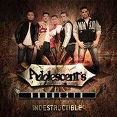 Indestructible by Adolescentes Orquesta