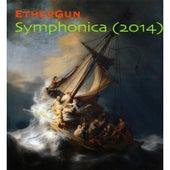 Symphonica (2014) by EtherGun