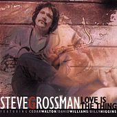 Love Is The Thing di Steve Grossman