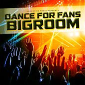 Dance for Fans Bigroom by Various Artists