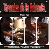 Grandes de la Bohemia by Various Artists