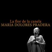La Flor de la Canela de Maria Dolores Pradera