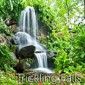 Trickling Falls Sound by Tmsoft's White Noise Sleep Sounds