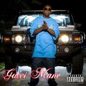 Freaky Gurl de Gucci Mane