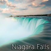 Niagara Falls Sound by Tmsoft's White Noise Sleep Sounds