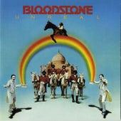 Unreal [w/Bonus Tracks] by Bloodstone
