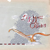 Liz Janes & Create(!) by Liz Janes