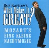 What Makes It Great?: Eine kleine Nachtmusik de Antonio Janigro