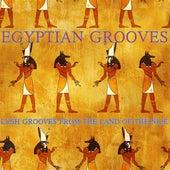 Egyptian Grooves de Various Artists